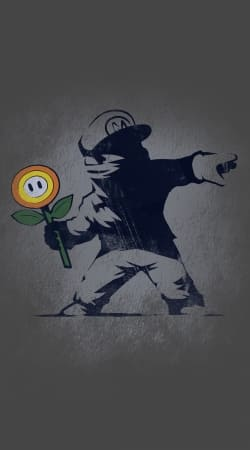 cover Banksy Flower bomb