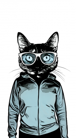 cover Cool Cat