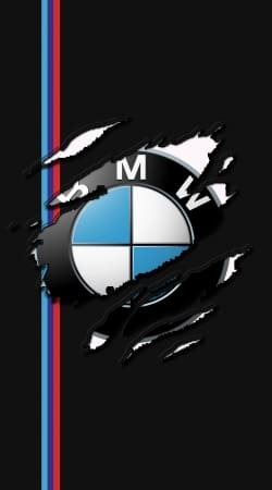 cover Fan Driver Bmw GriffeSport