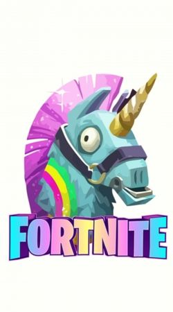 cover  Unicorn video games Fortnite