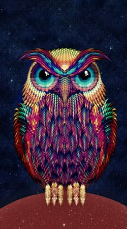 cover Owls in space