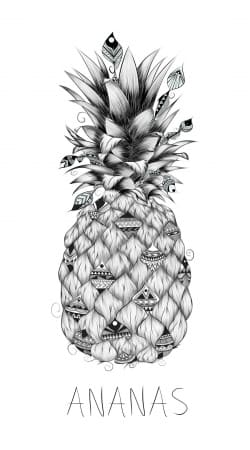 cover PineApplle