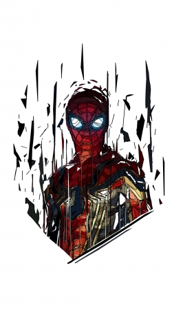 cover Spiderman Poly
