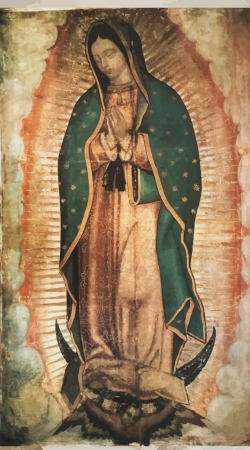 cover Virgen Guadalupe