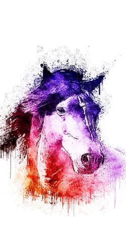 cover Watercolor Horse