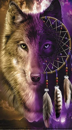 cover Wolf Dreamcatcher
