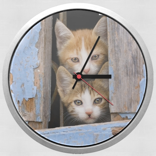 Cute curious kittens in an old window for Wall clock