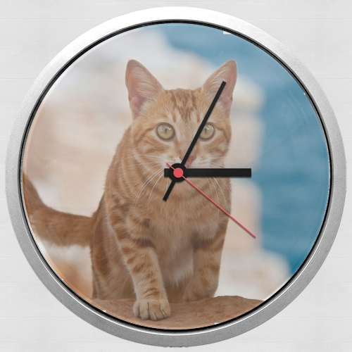 Ginger kitten on a cliff for Wall clock
