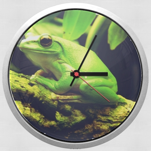 Green Frog for Wall clock