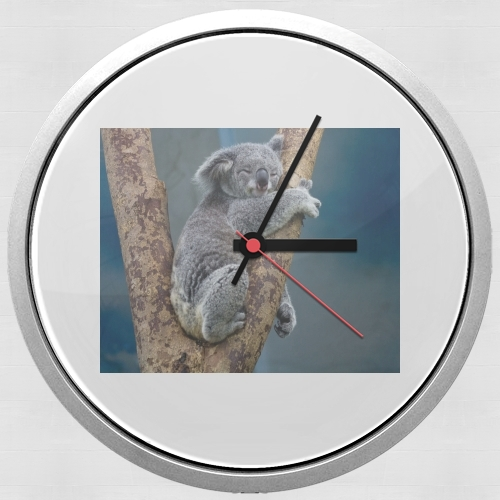 Koala Bear Australia for Wall clock