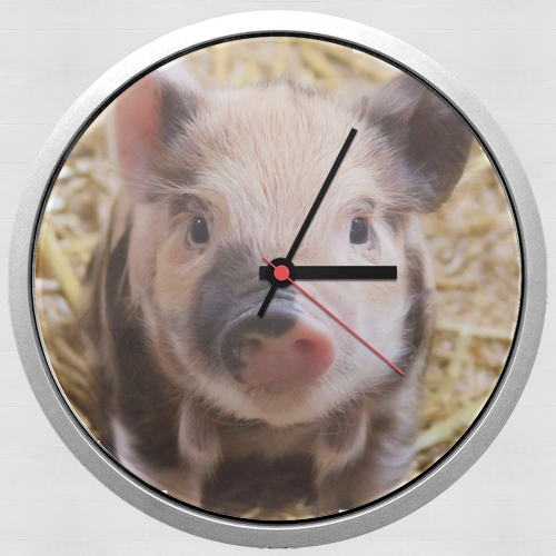 Pipapig for Wall clock