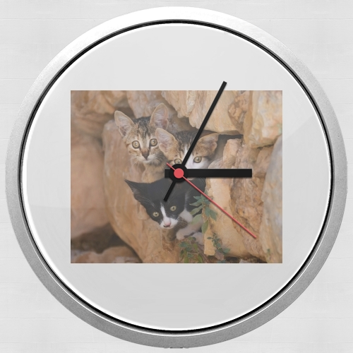 Three cute kittens in a wall hole for Wall clock