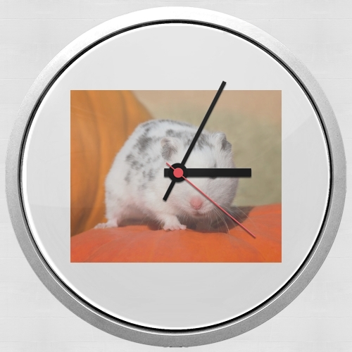 White Dalmatian Hamster with black spots  for Wall clock