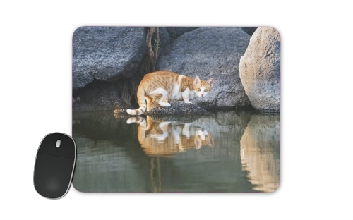 Cat Reflection in Pond Water for Mousepad