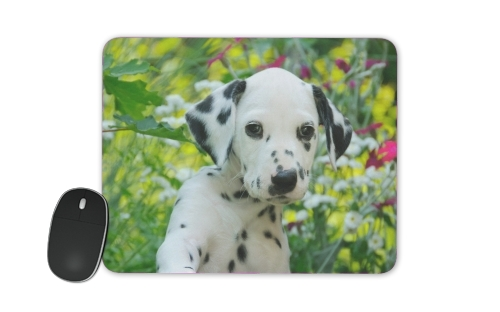 Cute Dalmatian puppy in a basket  for Mousepad