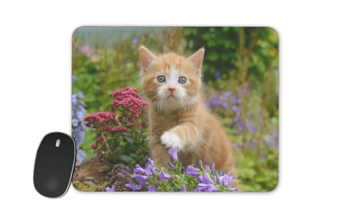 Cute ginger kitten in a flowery garden, lovely and enchanting cat for Mousepad
