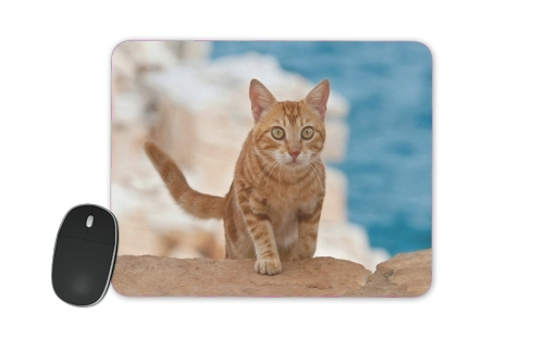 Ginger kitten on a cliff for Mousepad
