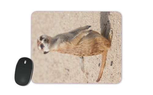 Meerkat for Mousepad