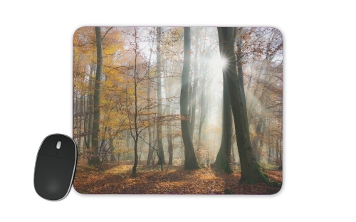 Sun rays in a mystic misty forest for Mousepad