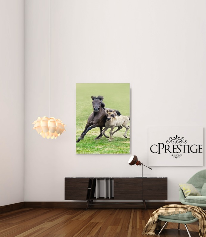 Horses, wild Duelmener ponies, mare and foal for Art Print Adhesive 30*40 cm
