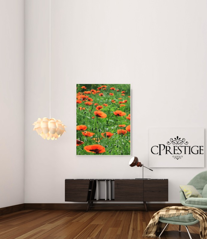 POPPY FIELD for Art Print Adhesive 30*40 cm