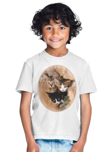 Three cute kittens in a wall hole for Kids T-Shirt