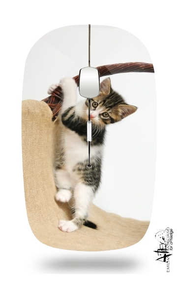 Baby cat, cute kitten climbing for Wireless optical mouse with usb receiver