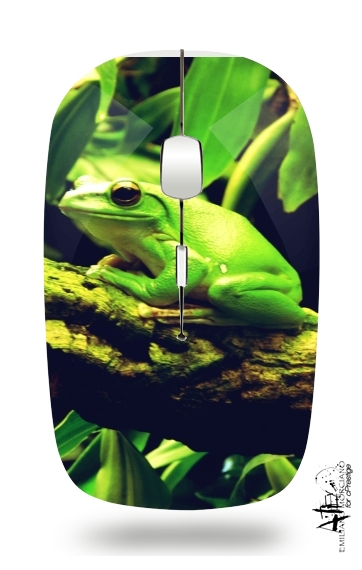 Green Frog for Wireless optical mouse with usb receiver