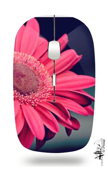 Pure Beauty for Wireless optical mouse with usb receiver