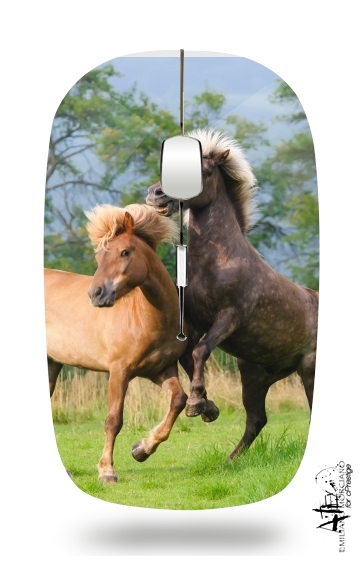 Two Icelandic horses playing, rearing and frolic around in a meadow for Wireless optical mouse with usb receiver