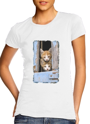 Cute curious kittens in an old window for Women's Classic T-Shirt