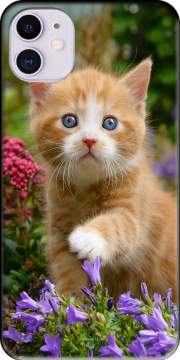 Cute ginger kitten in a flowery garden, lovely and enchanting cat for iPhone 11