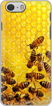 Bee in honey hive Iphone 6 4.7 Case