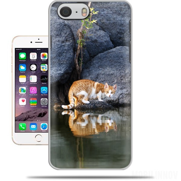 Case Cat Reflection in Pond Water for Iphone 6 4.7