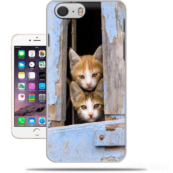 Case Cute curious kittens in an old window for Iphone 6 4.7