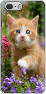 Cute ginger kitten in a flowery garden, lovely and enchanting cat Case for Iphone 6 4.7