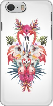 Flamingos Tropical Case for Iphone 6 4.7