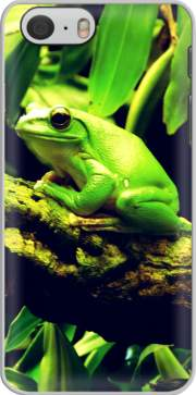 Green Frog Case for Iphone 6 4.7