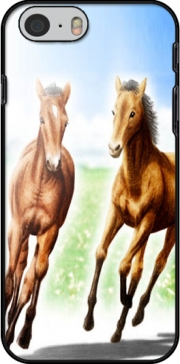Horse And Mare Case for Iphone 6 4.7