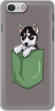 Husky Dog in the pocket Iphone 6 4.7 Case