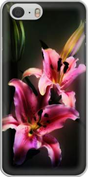 Painting Pink Stargazer Lily Case for Iphone 6 4.7