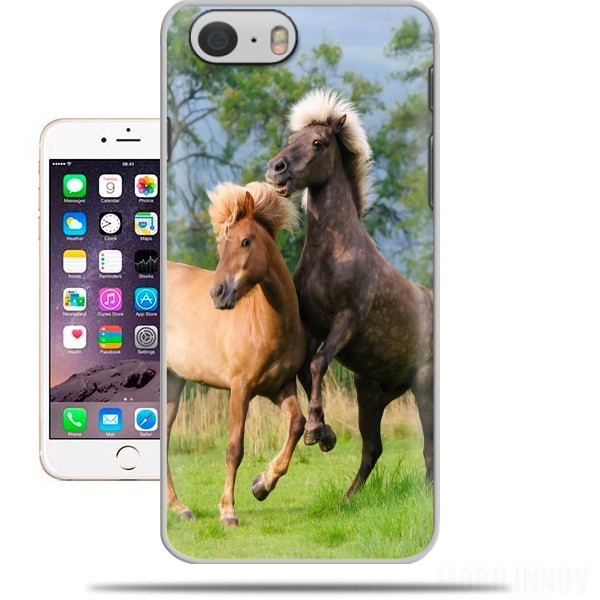 Case Two Icelandic horses playing, rearing and frolic around in a meadow for Iphone 6 4.7