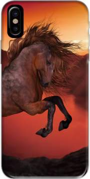 A Horse In The Sunset Case for Iphone X / Iphone XS