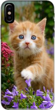 Cute ginger kitten in a flowery garden, lovely and enchanting cat Case for Iphone X / Iphone XS