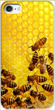 Bee in honey hive Case for Iphone 7 / Iphone 8