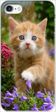 Cute ginger kitten in a flowery garden, lovely and enchanting cat for Iphone 7 / Iphone 8
