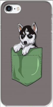 Husky Dog in the pocket Case for Iphone 7 / Iphone 8