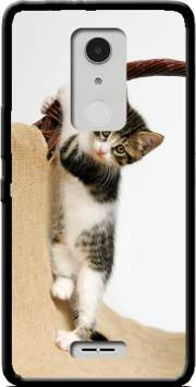 Baby cat, cute kitten climbing Case for Alcatel A3 XL