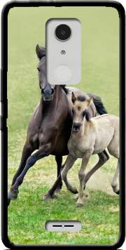 Horses, wild Duelmener ponies, mare and foal Case for Alcatel A3 XL