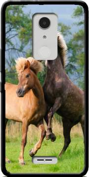 Two Icelandic horses playing, rearing and frolic around in a meadow Case for Alcatel A3 XL